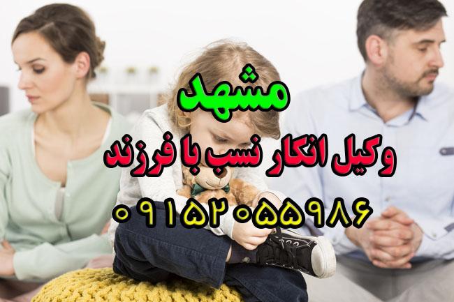 وکیل نفی و انکار نسب(فرزند) در مشهد